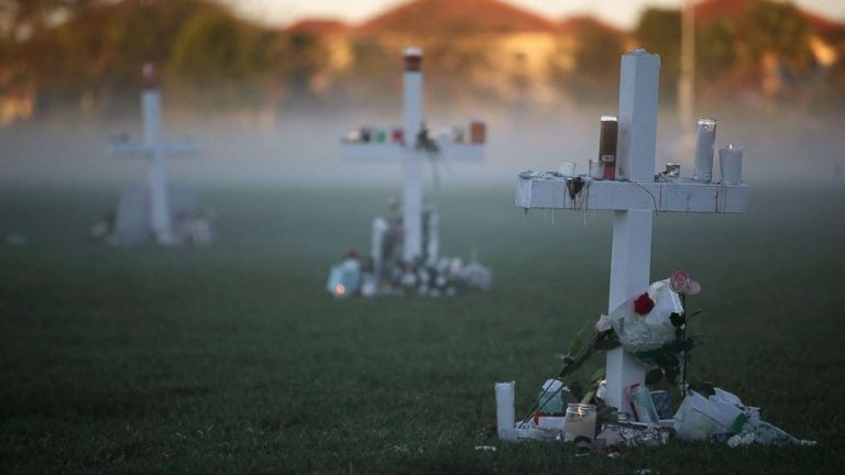 Parkland school shooting 3 years later: Remembering the 17 victims
