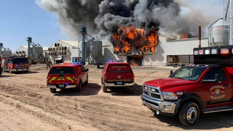Over 166,000 hens die in Arizona farm fire