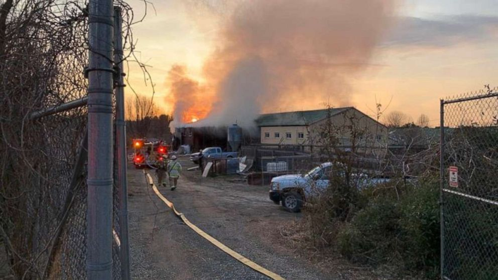 2 giraffes dead after fire engulfs their barn at zoo